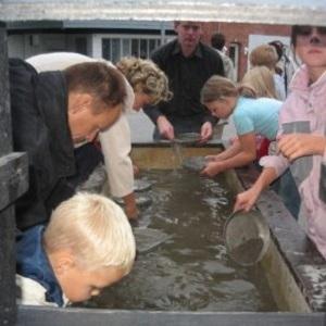 Koncept, guldgraver, børn aktivitet